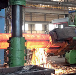 3000 tons completely renewed plant
